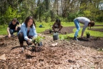 Jill Wrigley--Student group planting food forest
